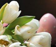 Benessere di Pasqua