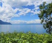 Benessere di Luglio sul Lago di Vico